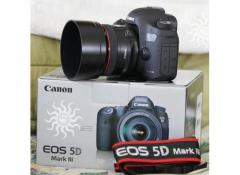 Canon EOS 5D Mark III con EF 24-105mm IS lente